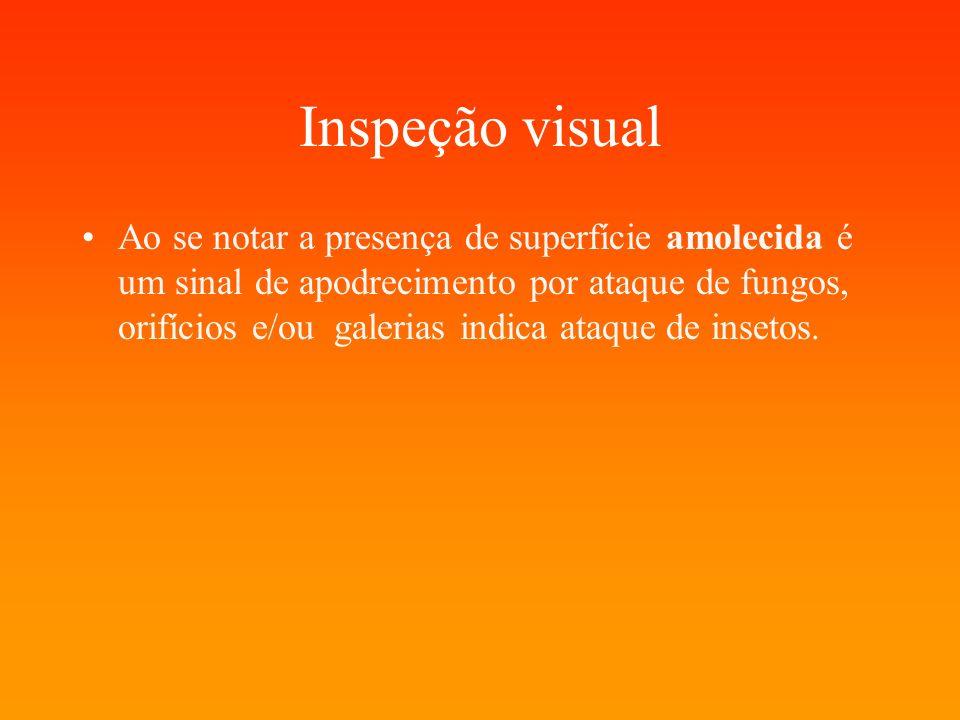 Inspeção visual Ao se notar a presença de superfície amolecida é um sinal de apodrecimento por ataque de fungos, orifícios e/ou galerias indica ataque de insetos.