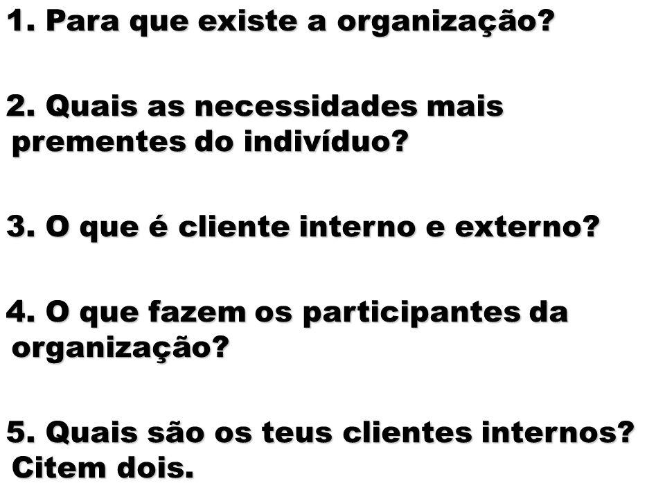 3 Prof. Lessa 1. Para que existe a organização? 2. Quais as necessidades mais prementes do indivíduo? 3. O que é cliente interno e externo? 4. O que f