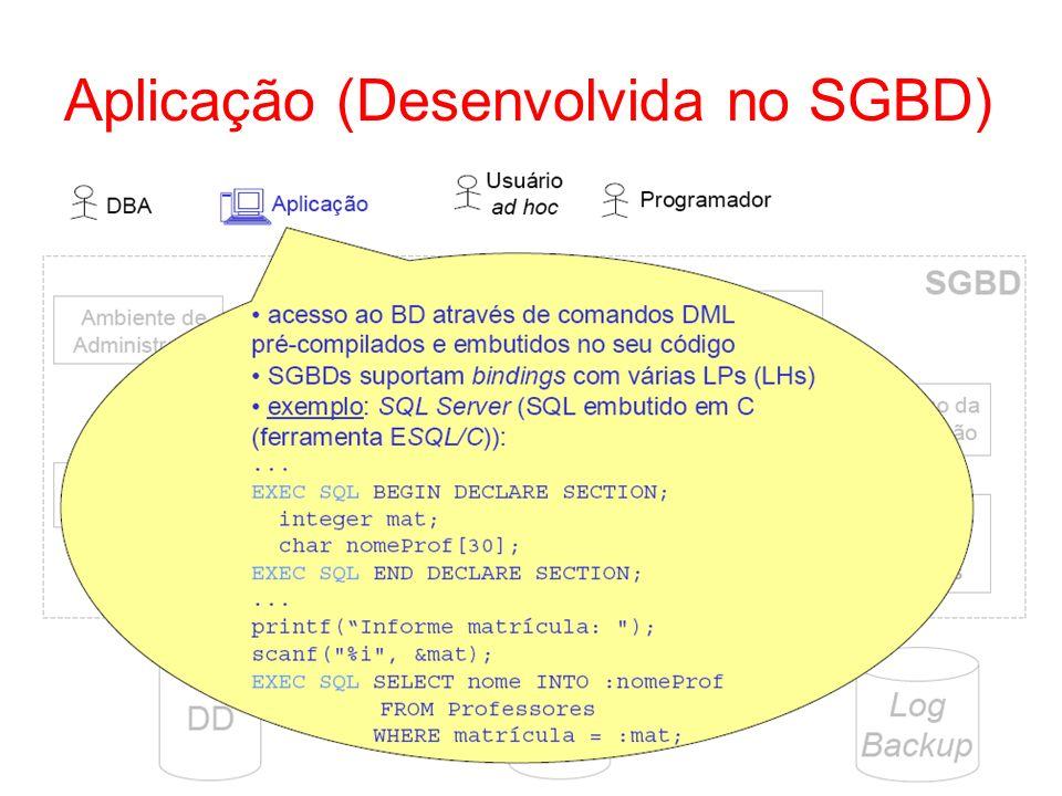 Aplicação (Desenvolvida no SGBD)
