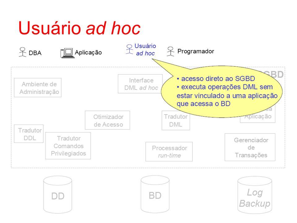 Usuário ad hoc