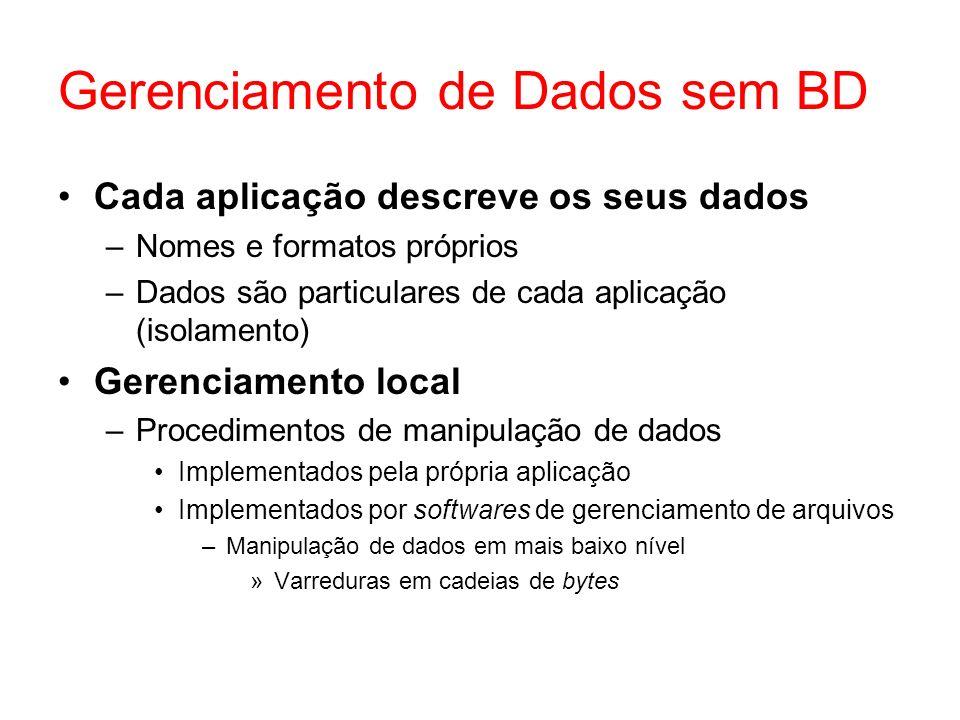 Gerenciamento de Dados sem BD Cada aplicação descreve os seus dados –Nomes e formatos próprios –Dados são particulares de cada aplicação (isolamento) Gerenciamento local –Procedimentos de manipulação de dados Implementados pela própria aplicação Implementados por softwares de gerenciamento de arquivos –Manipulação de dados em mais baixo nível »Varreduras em cadeias de bytes