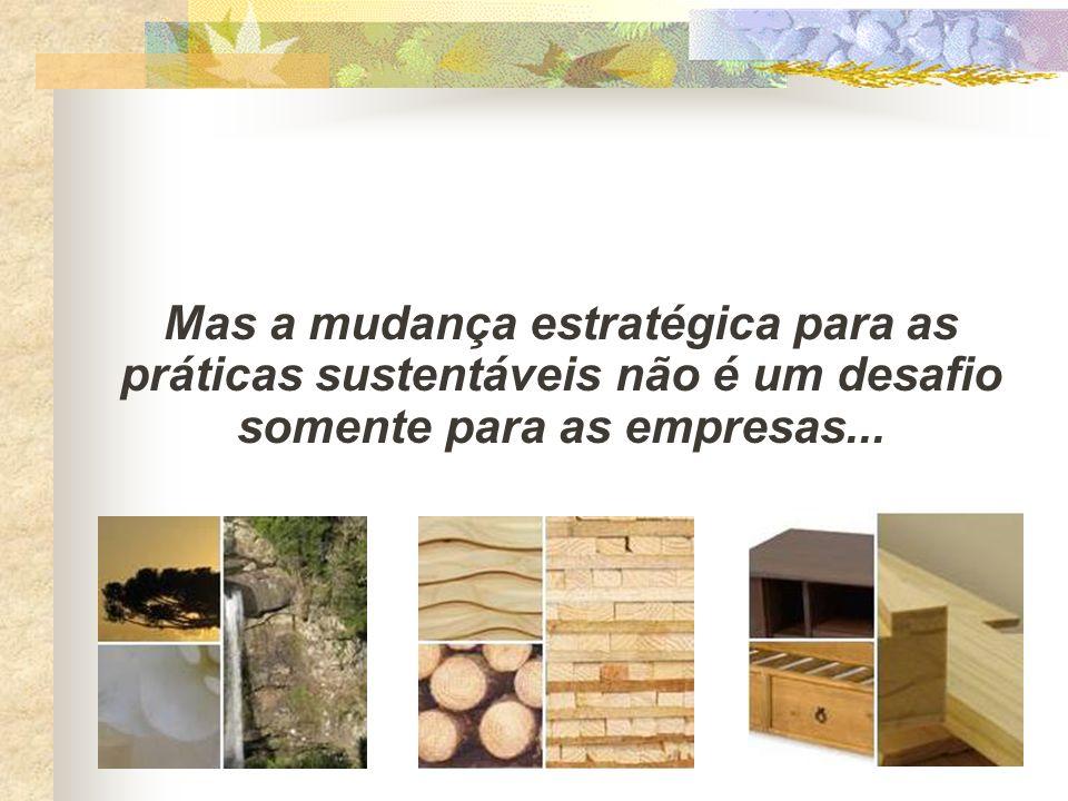 Mas a mudança estratégica para as práticas sustentáveis não é um desafio somente para as empresas...