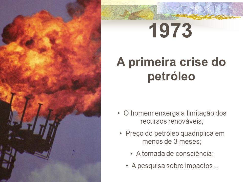 1973 A primeira crise do petróleo O homem enxerga a limitação dos recursos renováveis; Preço do petróleo quadriplica em menos de 3 meses; A tomada de