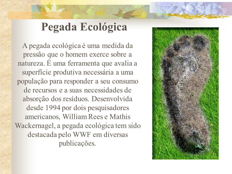 A pegada ecológica é uma medida da pressão que o homem exerce sobre a natureza. É uma ferramenta que avalia a superfície produtiva necessária a uma po