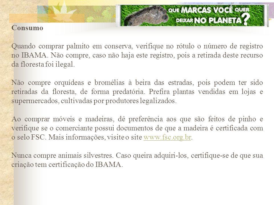 Consumo Quando comprar palmito em conserva, verifique no rótulo o número de registro no IBAMA. Não compre, caso não haja este registro, pois a retirad