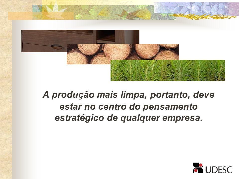 A produção mais limpa, portanto, deve estar no centro do pensamento estratégico de qualquer empresa.