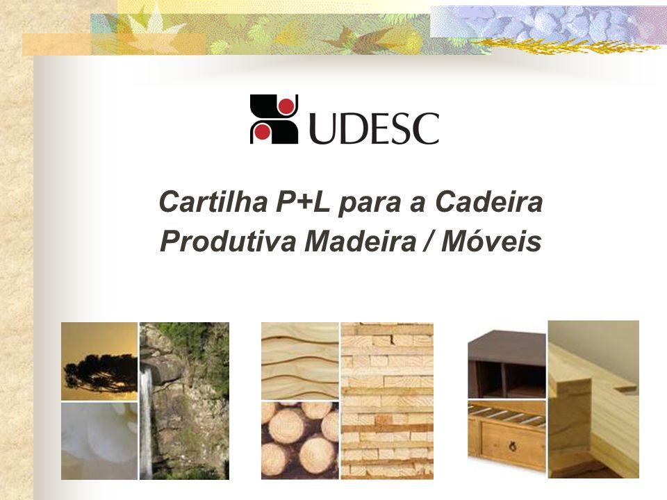 OBRIGADO A TODOS!!! Maiores informações:Prof. Delcio Pereira delcio@sbs.udesc.br