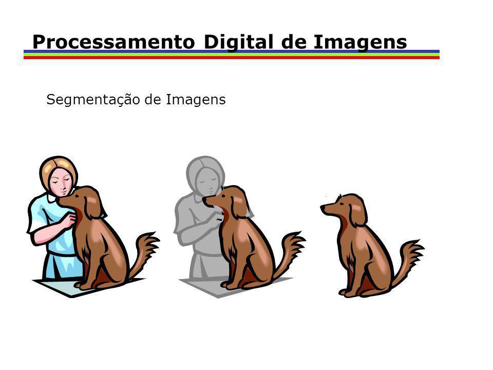 Segmentação de Imagens Processamento Digital de Imagens