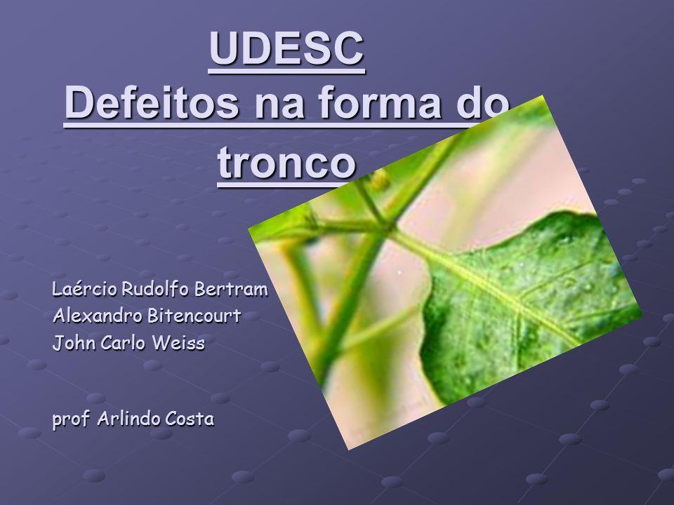 UDESC Defeitos na forma do tronco Laércio Rudolfo Bertram Alexandro Bitencourt John Carlo Weiss prof Arlindo Costa