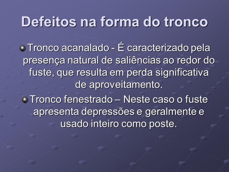 Defeitos na forma do tronco Tronco acanalado - É caracterizado pela presença natural de saliências ao redor do fuste, que resulta em perda significati