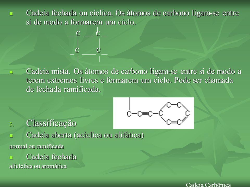 Cadeia fechada ou cíclica. Os átomos de carbono ligam-se entre si de modo a formarem um ciclo. Cadeia fechada ou cíclica. Os átomos de carbono ligam-s