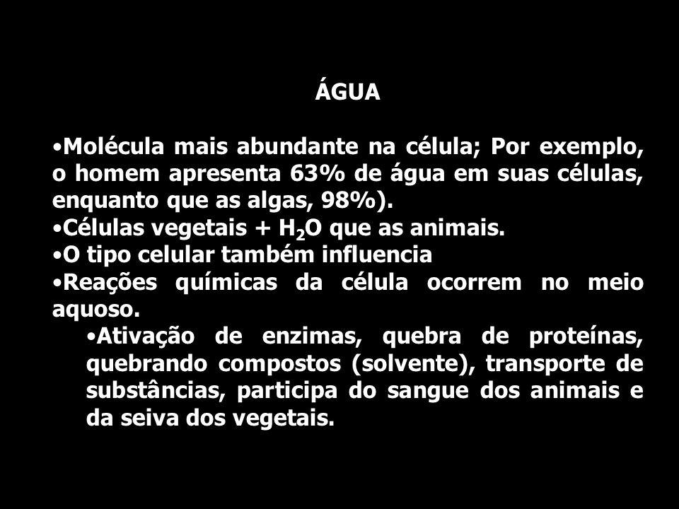 ÁGUA Molécula mais abundante na célula; Por exemplo, o homem apresenta 63% de água em suas células, enquanto que as algas, 98%). Células vegetais + H