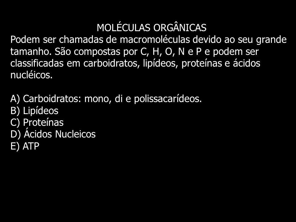 MOLÉCULAS ORGÂNICAS Podem ser chamadas de macromoléculas devido ao seu grande tamanho. São compostas por C, H, O, N e P e podem ser classificadas em c