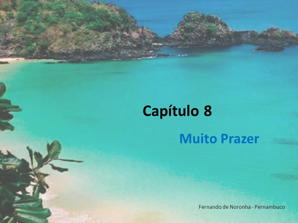 Capítulo 8 Muito Prazer Fernando de Noronha - Pernambuco