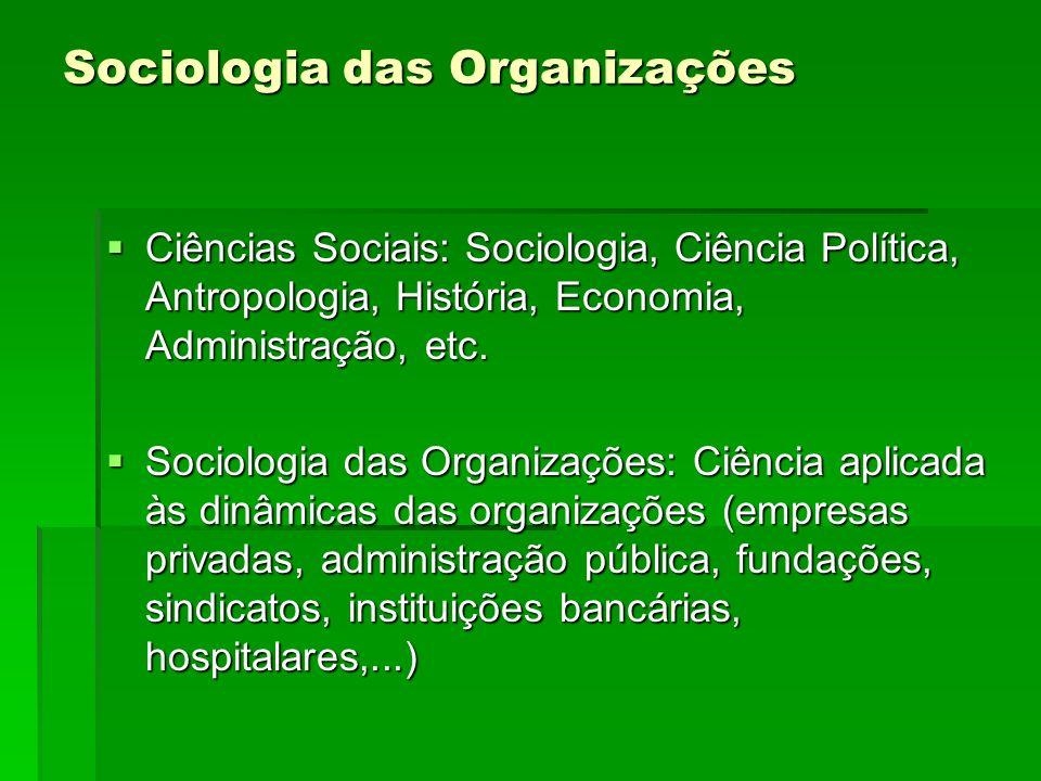 Sociologia das Organizações Ciências Sociais: Sociologia, Ciência Política, Antropologia, História, Economia, Administração, etc. Ciências Sociais: So