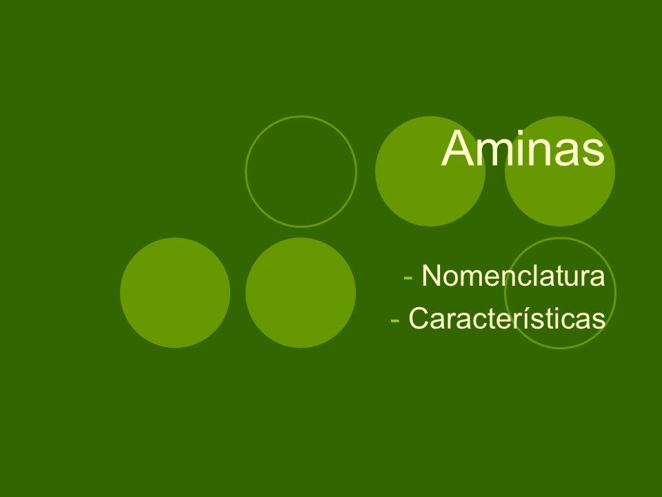 Aminas - Nomenclatura - Características