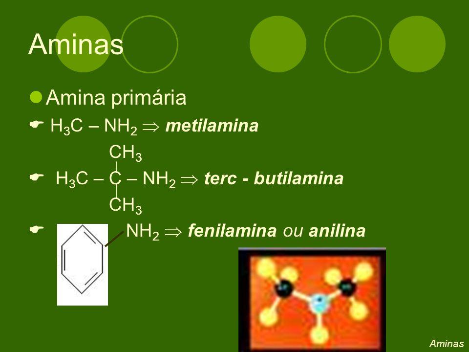 Amina primária H 3 C – NH 2 metilamina CH 3 H 3 C – C – NH 2 terc - butilamina CH 3 NH 2 fenilamina ou anilina Aminas