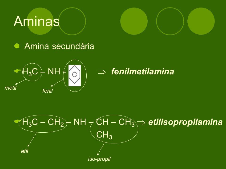Amina secundária H 3 C – NH - fenilmetilamina H 3 C – CH 2 – NH – CH – CH 3 etilisopropilamina CH 3 metil fenil etil iso-propil