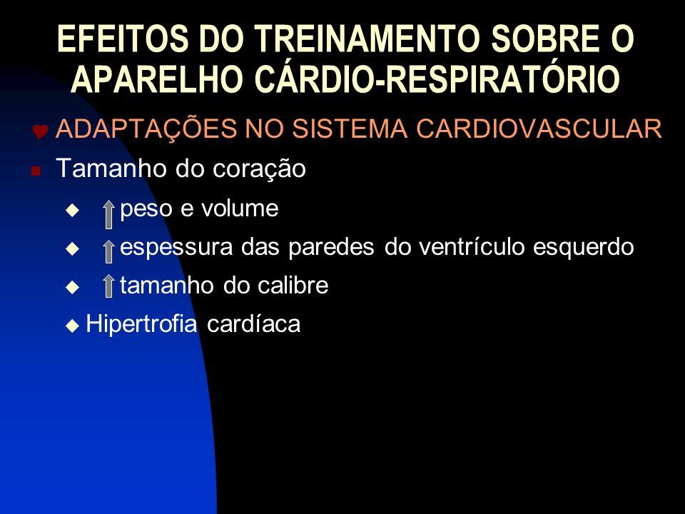 EFEITOS DO TREINAMENTO SOBRE O APARELHO CÁRDIO-RESPIRATÓRIO ADAPTAÇÕES NO SISTEMA CARDIOVASCULAR Tamanho do coração peso e volume espessura das parede