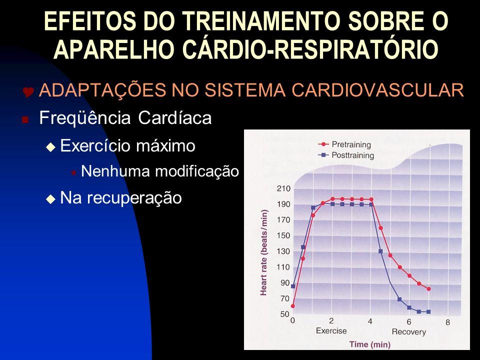 EFEITOS DO TREINAMENTO SOBRE O APARELHO CÁRDIO-RESPIRATÓRIO ADAPTAÇÕES NO SISTEMA CARDIOVASCULAR Freqüência Cardíaca Exercício máximo Nenhuma modifica