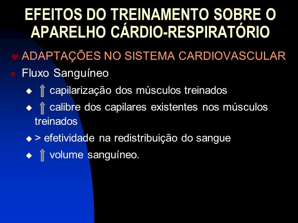 EFEITOS DO TREINAMENTO SOBRE O APARELHO CÁRDIO-RESPIRATÓRIO ADAPTAÇÕES NO SISTEMA CARDIOVASCULAR Fluxo Sanguíneo capilarização dos músculos treinados