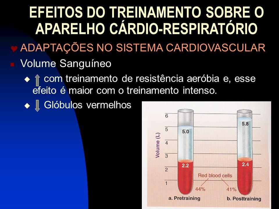 EFEITOS DO TREINAMENTO SOBRE O APARELHO CÁRDIO-RESPIRATÓRIO ADAPTAÇÕES NO SISTEMA CARDIOVASCULAR Volume Sanguíneo com treinamento de resistência aerób