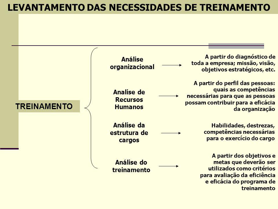 TREINAMENTO Análise organizacional Analise de Recursos Humanos Análise da estrutura de cargos Análise do treinamento A partir do diagnóstico de toda a
