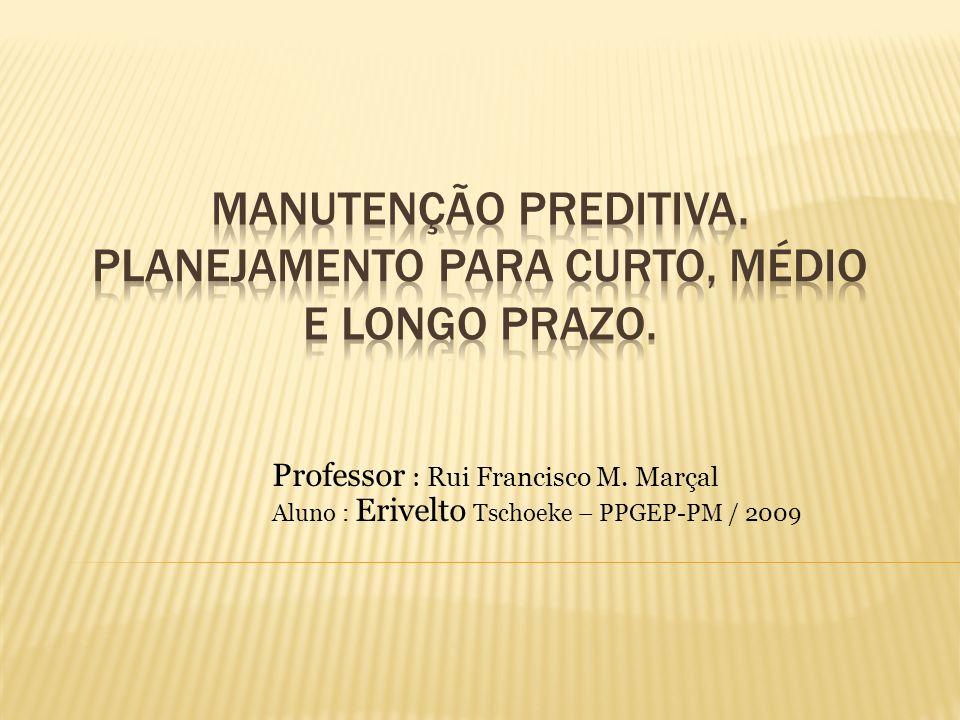 Professor : Rui Francisco M. Marçal Aluno : Erivelto Tschoeke – PPGEP-PM / 2009