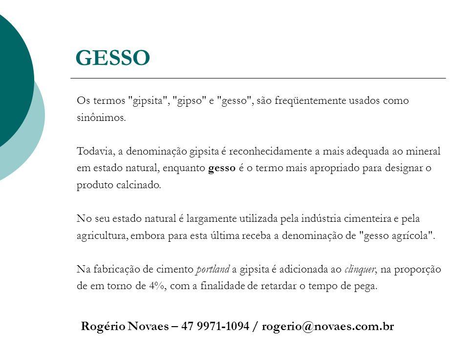GESSO Rogério Novaes – 47 9971-1094 / rogerio@novaes.com.br Os termos