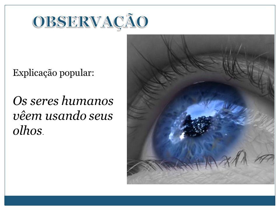 Explicação popular: Os seres humanos vêem usando seus olhos.