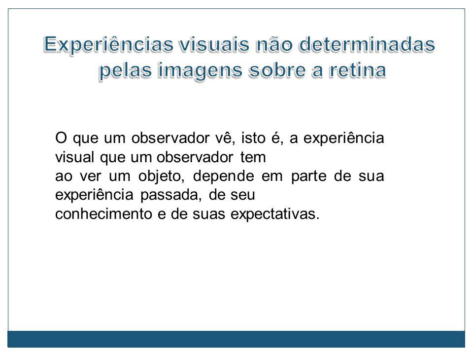 O que um observador vê, isto é, a experiência visual que um observador tem ao ver um objeto, depende em parte de sua experiência passada, de seu conhe