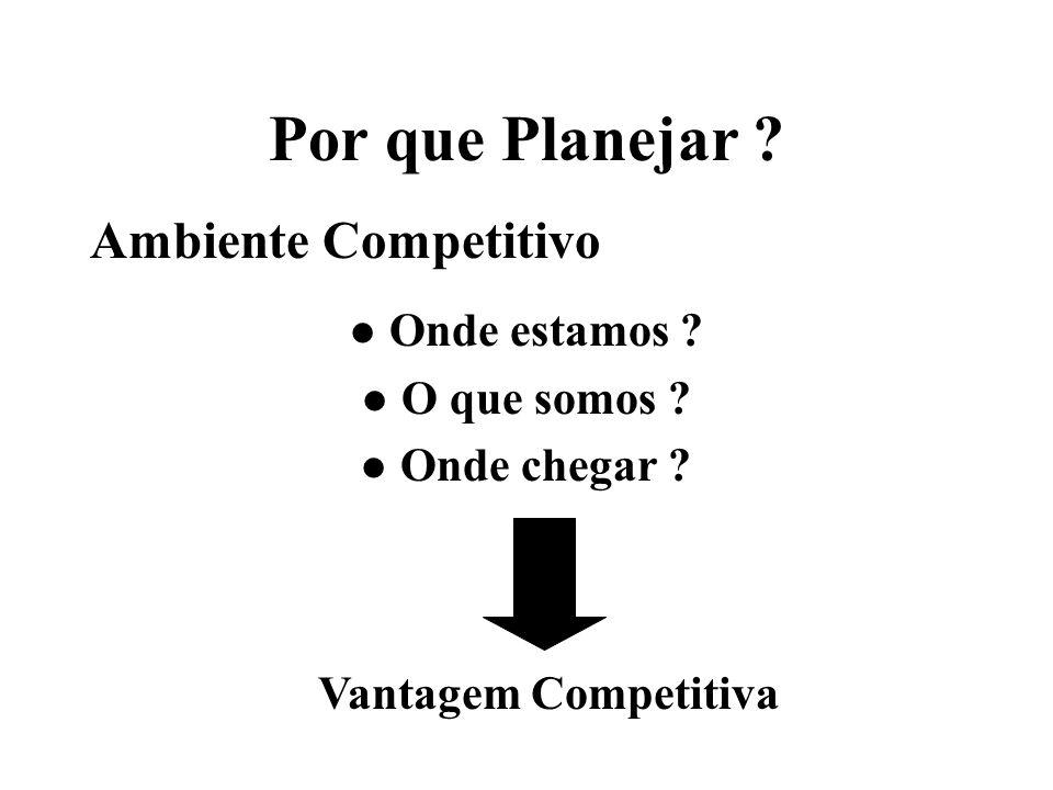 Por que Planejar ? Ambiente Competitivo l Onde estamos ? l O que somos ? l Onde chegar ? Vantagem Competitiva