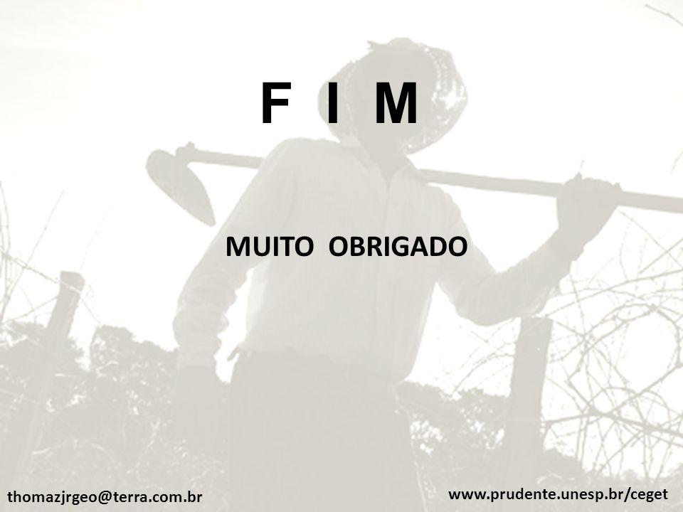 F I M MUITO OBRIGADO thomazjrgeo@terra.com.br www.prudente.unesp.br/ceget