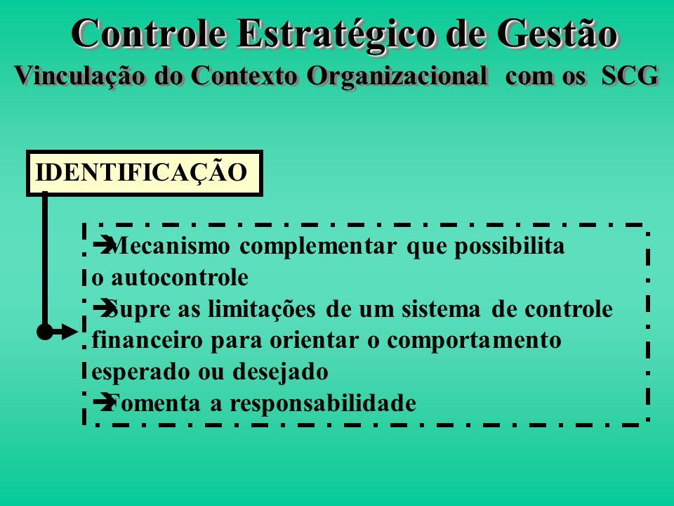 Definição Grupo de explícitas definições organizacionais que altos executivos comunicam formalmente e reforçam sistematicamente para prover, aos parti