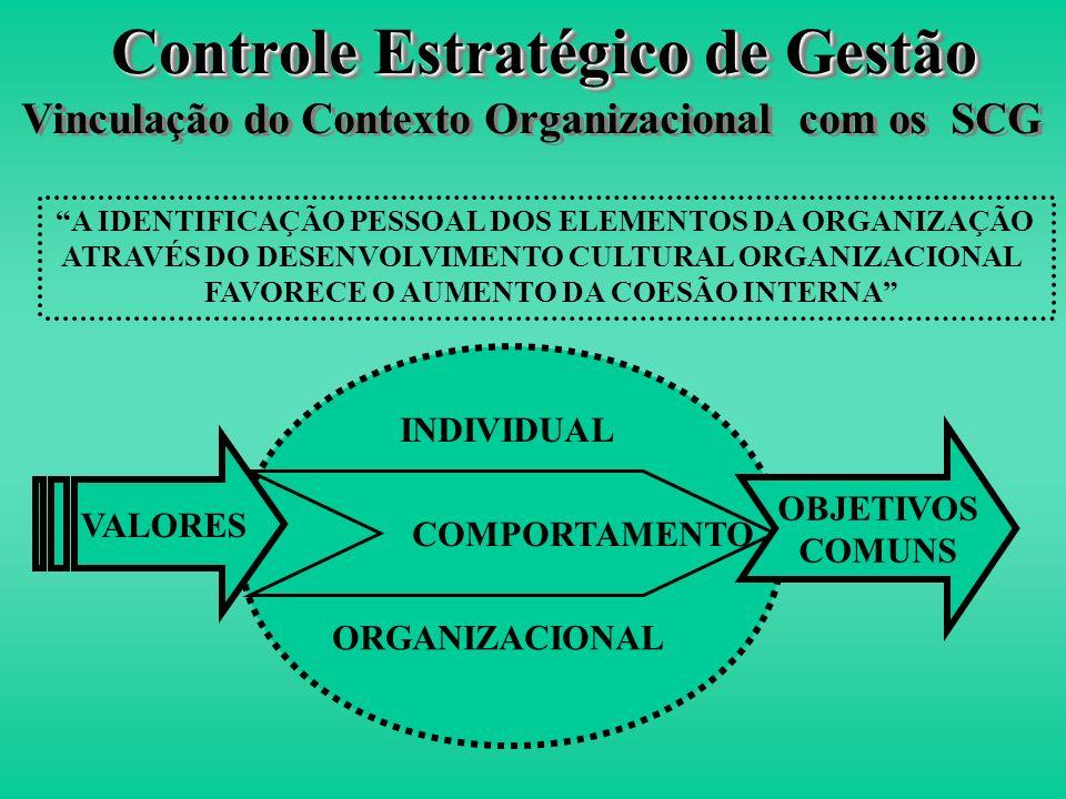 Controle Estratégico de Gestão Vinculação do Contexto Organizacional com os SCG IDENTIFICAÇÃO Mecanismo complementar que possibilita o autocontrole Su