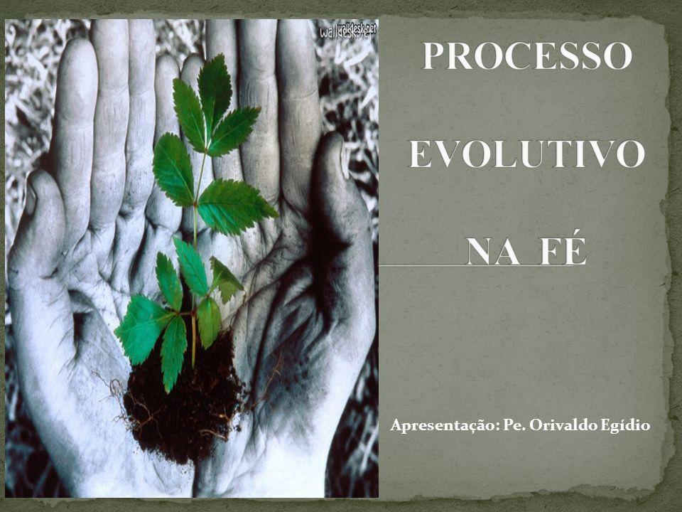 Assim refletindo é possível afirmar que o Dízimo é fruto de uma decisão evolutiva.