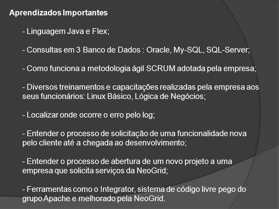 Aprendizados Importantes - Linguagem Java e Flex; - Consultas em 3 Banco de Dados : Oracle, My-SQL, SQL-Server; - Como funciona a metodologia ágil SCR