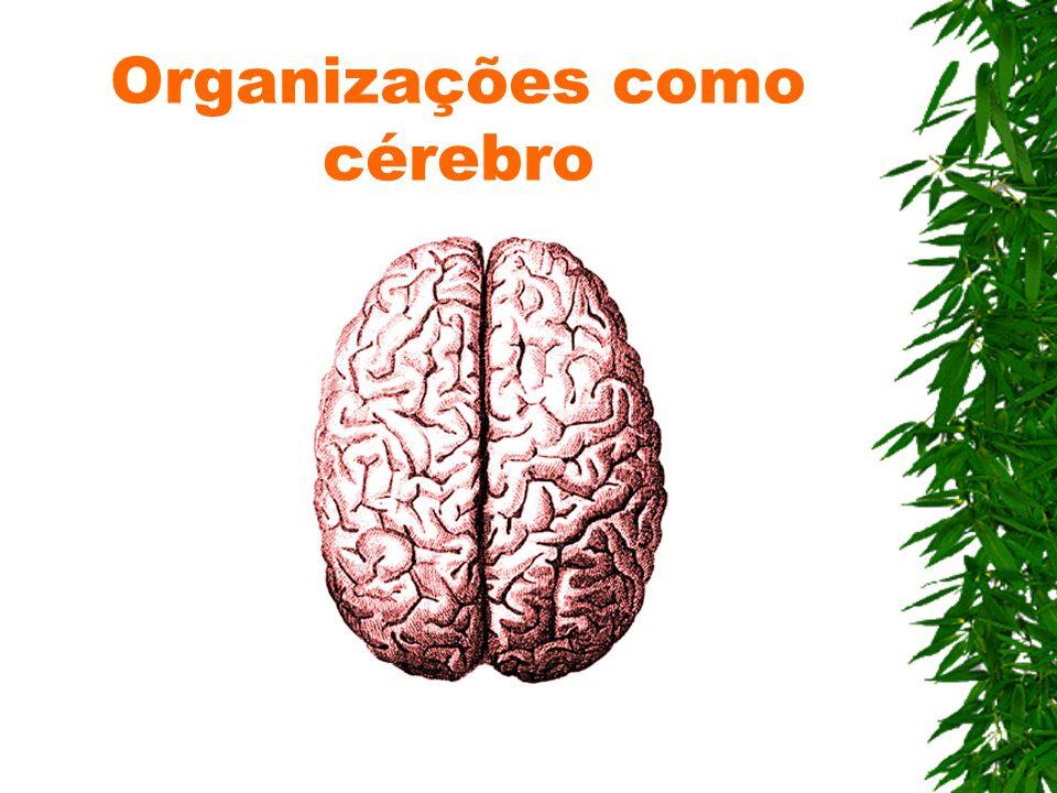 Organizações como cérebro