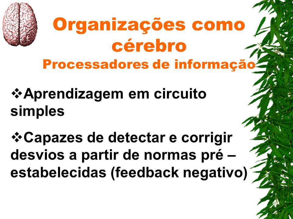 Organizações como cérebro Processadores de informação Aprendizagem em circuito simples Capazes de detectar e corrigir desvios a partir de normas pré –