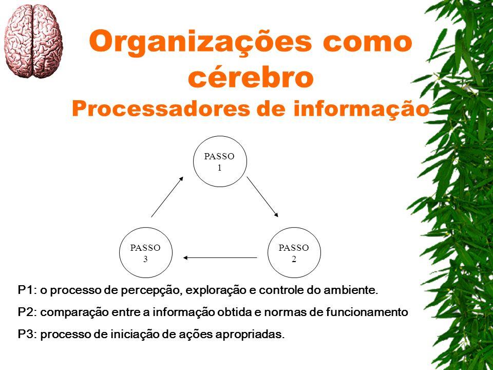 Organizações como cérebro Processadores de informação PASSO 1 PASSO 2 PASSO 3 P1: o processo de percepção, exploração e controle do ambiente. P2: comp