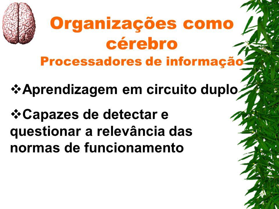 Organizações como cérebro Processadores de informação Aprendizagem em circuito duplo Capazes de detectar e questionar a relevância das normas de funci