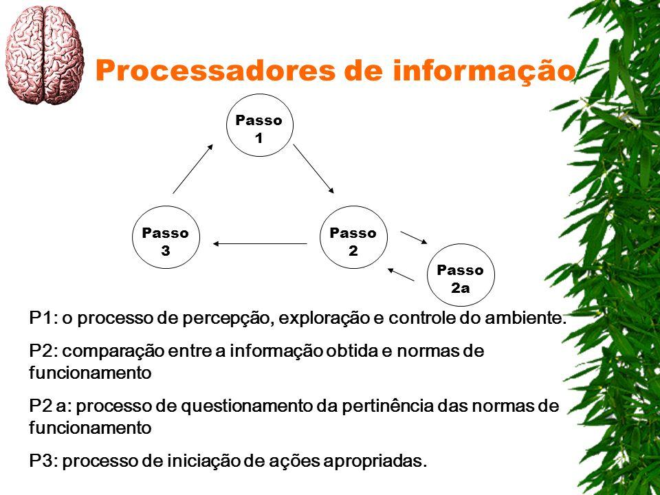 Processadores de informação Passo 1 Passo 2 Passo 3 Passo 2a P1: o processo de percepção, exploração e controle do ambiente. P2: comparação entre a in