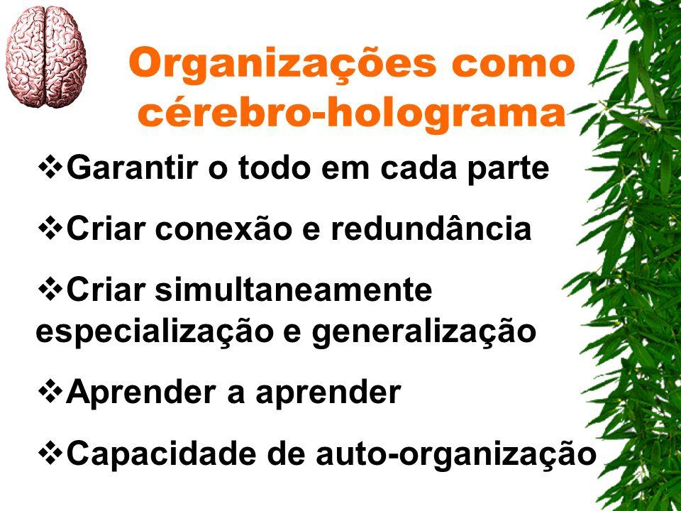 Organizações como cérebro-holograma Garantir o todo em cada parte Criar conexão e redundância Criar simultaneamente especialização e generalização Apr
