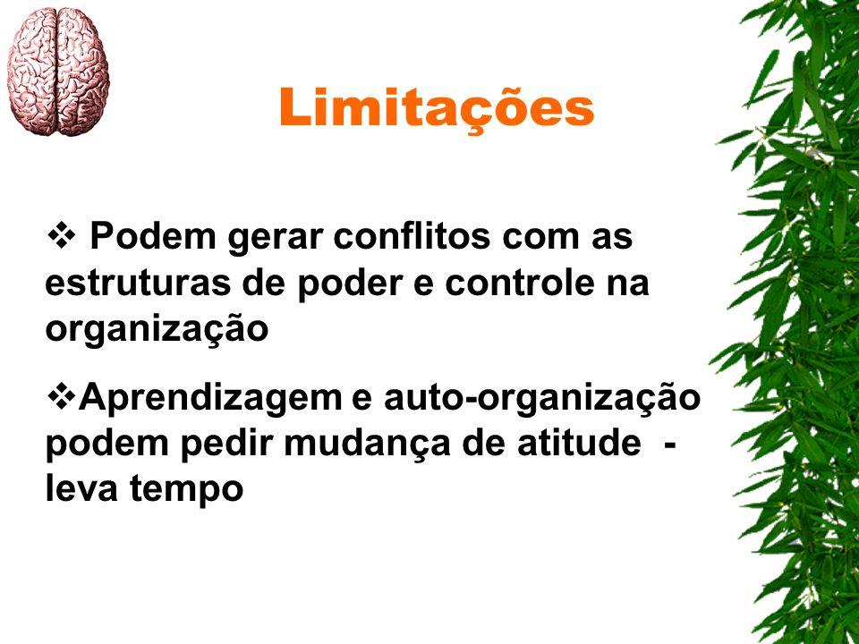 Limitações Podem gerar conflitos com as estruturas de poder e controle na organização Aprendizagem e auto-organização podem pedir mudança de atitude -