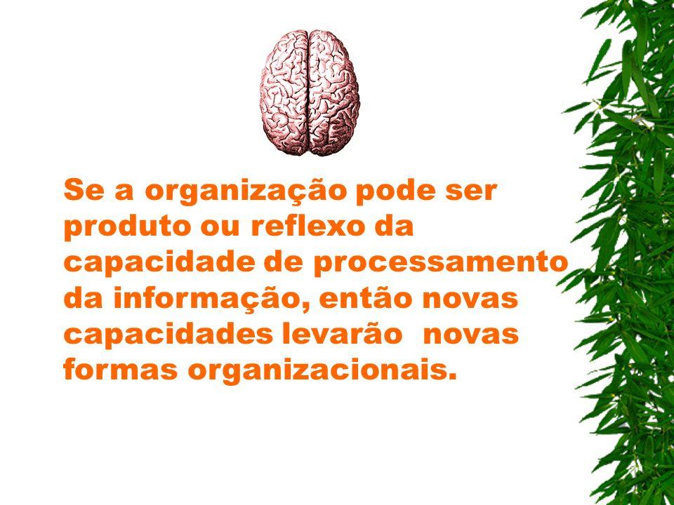 Se a organização pode ser produto ou reflexo da capacidade de processamento da informação, então novas capacidades levarão novas formas organizacionai