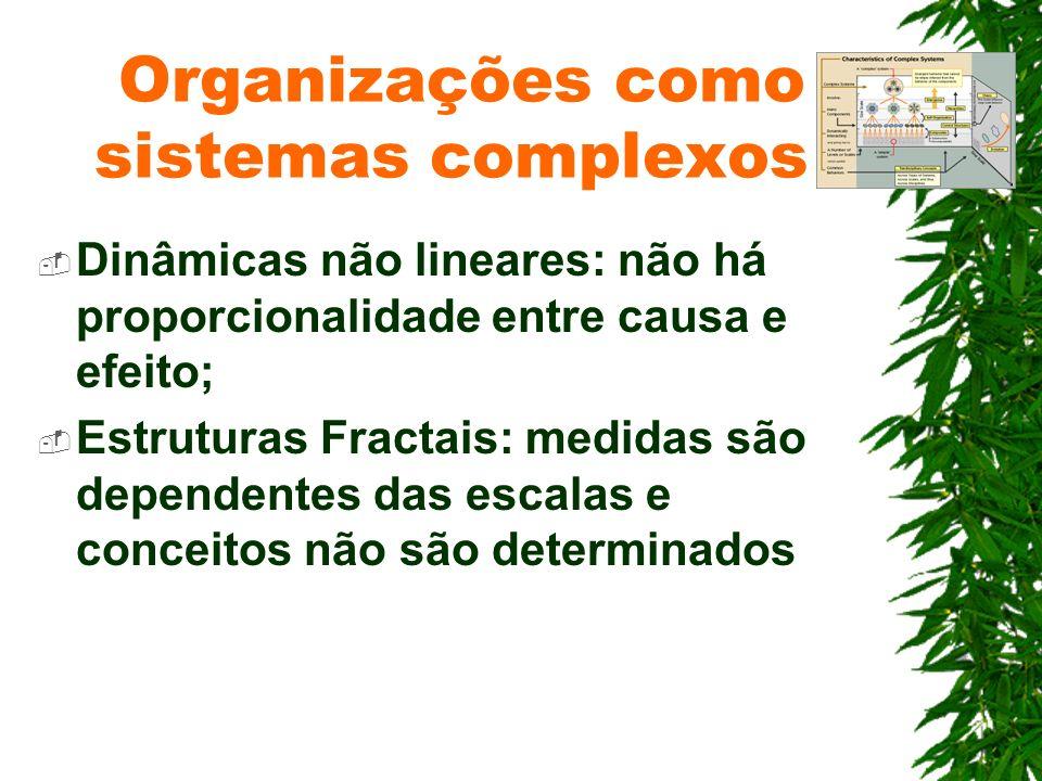 Dinâmicas não lineares: não há proporcionalidade entre causa e efeito; Estruturas Fractais: medidas são dependentes das escalas e conceitos não são de