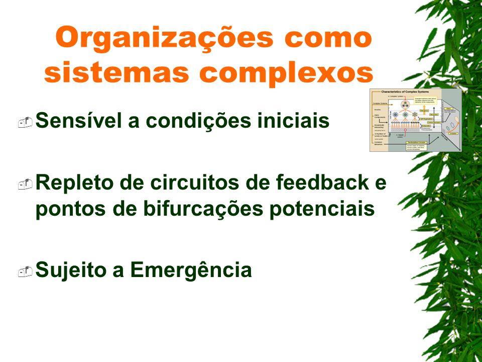 Organizações como sistemas complexos Sensível a condições iniciais Repleto de circuitos de feedback e pontos de bifurcações potenciais Sujeito a Emerg