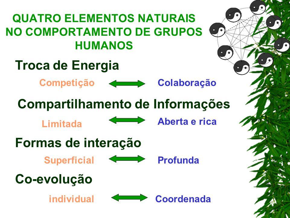 QUATRO ELEMENTOS NATURAIS NO COMPORTAMENTO DE GRUPOS HUMANOS CompetiçãoColaboração Troca de Energia Compartilhamento de Informações Formas de interaçã