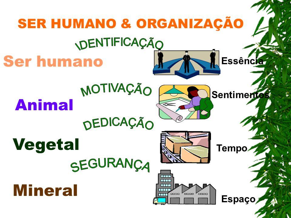 Mineral Vegetal Animal Ser humano SER HUMANO & ORGANIZAÇÃO Espaço Tempo Sentimentos Essência