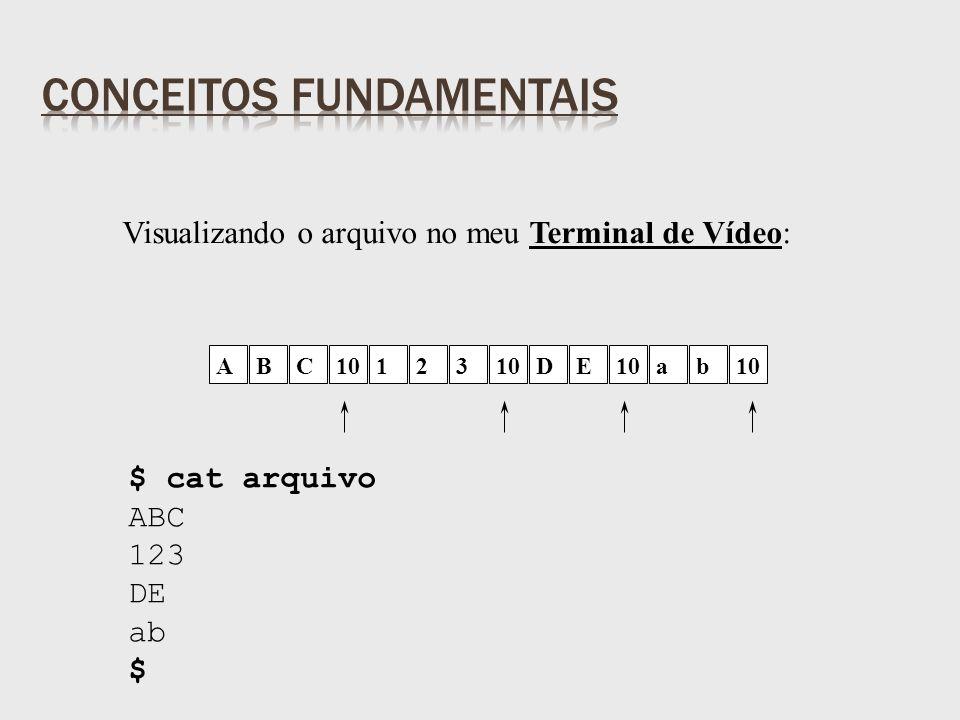 Visualizando o arquivo no meu Terminal de Vídeo: $ cat arquivo ABC 123 DE ab $ ABC10123 DE ab